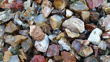 3+ POUNDS of TUMBLING ROUGH Includes: Mixed Agate's, Jasper's