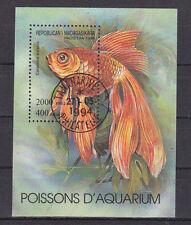 """schöner Block Aquariumfische aus """" Madagaskar """""""