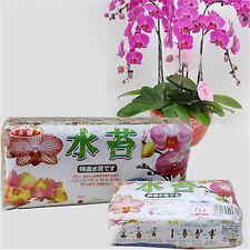 12L Sphagnum Moss Bryophytes Phalaenopsis Orchid Medium Moisturizing Nutrition