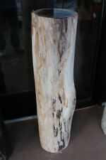 "39"" H Stool pedestal petrified wood Polish finished Contemporary spectacular a-3"