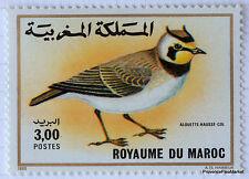 MAROC Yt 1074 Timbre neuf  Faune, Oiseaux - Alouette hausse-col