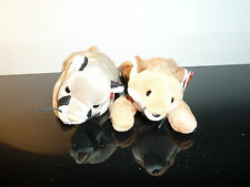 TY Beanie Baby Lot Of 2- Sly & Canyon