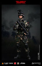"DAM DAMTOYS 1/6 Scale 12"" Chinese Liberation Army Special Forces Recon 78022"