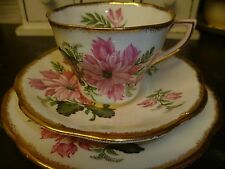 Beautiful Vintage Clare  China Trio-Cup, Saucer & Side Plate-Large Pink Floral