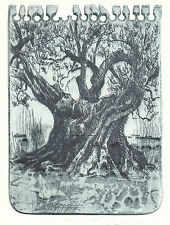 Baum Exlibris Jens Rusch Ancient Tree Etching c3 signed Radierung