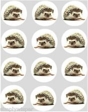 12 Hedgehog Cupcake Decoration Edible Cake Toppers Rice Paper Pre Cut 40mm