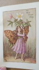 "c1940's ""FLOWER FAIRIES OF THE SPRING"" by CICELY MARY BARKER - 24 COLOUR PLATES"