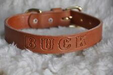 "Leather Dog Custom Collar  1"" Wide Personalized Free"