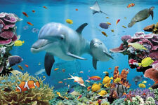 TROPICAL DOLPHINS - OCEAN REEF POSTER - 24x36 SHRINK WRAPPED - NATURE 33616