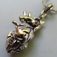 Tell Tale Heart Pendant Necklace w/ Anatomical Human Heart Silver Plated Pendant