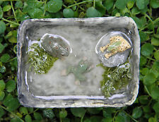 Miniature Dollhouse FAIRY GARDEN Accessories ~ Tiny Frog Pond ~ NEW