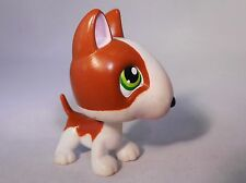 Littlest Pet Shop DOG / PUPPY BULL TERRIER rare Child Girl Figure Cute Toy Loose