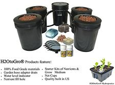 5 Gallon, 4 Site Circulating Hydroponic DWC BUCKET Bubbler System