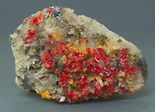 QUARTZ BED WITH REALGAR ORPIMENT PYRITE GALENAS  PALOMO MINE PERU ANDES 0017