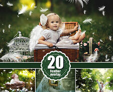 20 white feather photoshop overlays, angel wing photo overlay, newborn baby