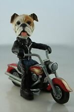 BULLDOG WHITE    DOG ON A MOTORCYCLE(SEE ALL BREEDS  BODIES @ EBAY STORE