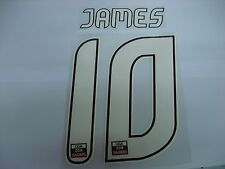 JAMES #10 FC PORTO Home 2012-13 PU NAME AND NUMBERING