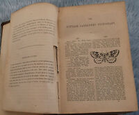 1852 Cottage Gardeners Dictionary Plants Vegetables Antiquarian Natural History