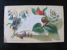 Signed Mary Proctor Copyright 1878 Wemple & Kronheim Floral Design Calling Card