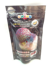 Fish Food Pellets Okiko Platinum Big Head Faster Flower horn and Color 100 g L