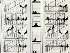 RPG438 Old Style New York City Fire Escape Pigeon Bird Cotton Quilting Fabric