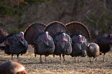 JAGERMISTER OUTFITTERS-IOWA 2 DAY FULLY GUIDED TURKEY HUNT SEASON 3 LODGING