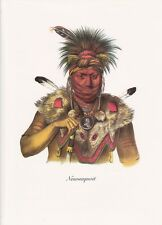 """1972 Vintage Full Color Art Plate """"CHIEF BEAR IN TREE"""" NATIVE AM INDIAN Litho"""