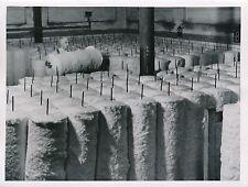 ROYAUME-UNI c. 1950-  Industrie de Coton  Entrepôt  - Div 7653
