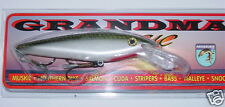 "6"" Deep Diving Shad Grandma Lure Crankbait Musky Pike Tennessee Shad G6DD-18"