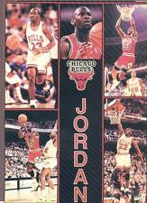 1990 Starline MICHAEL JORDAN Bulls Monster Poster MINI Promo Piece RARE