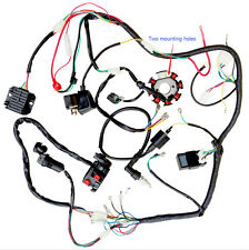 Wire Loom Harness Solenoid Magneto Coil Regulator CDI For 250cc ATV Quad TU2