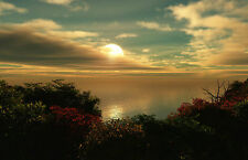 Framed Print - Ocean Sunset View from a Flower Meadow (Picture Poster Art Sea)