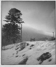 c1935 anonyme paysage d'hiver tirage argentique vintage print BRIVE CORREZE