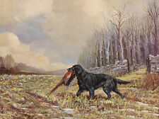 FLAT COATED RETRIEVER DOG GREETINGS NOTE CARD BEAUTIFUL DOG IN RURAL SETTING