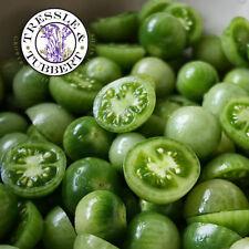 Rare Cherry Green Tomato - 10 seeds - UK SELLER