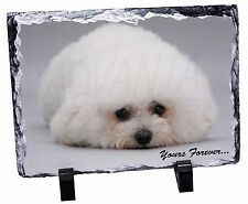 Bichon Frise Dog 'Yours Forever' Photo Slate Christmas Gift Ornament, AD-BF3SL