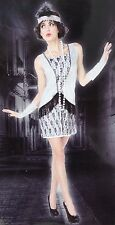 SILVER & BLACK FLAPPER COSTUME Adult Women Small Halloween Fancy Dress 1920s NEW