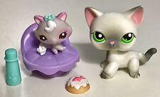✨Littlest Pet Shop✨ Shorthair Cat #125 & Kitten #2627 w/Acc.'s ✨AUTHENTIC✨