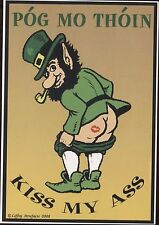 "Greetings From Ireland ""Pog Mo Thoin"" Kiss My Vintage Postcard C472"
