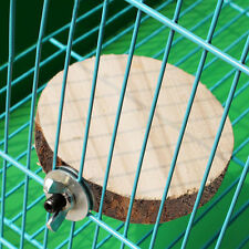 Wooden Round Coin Parrot Bird Pets Cage Perches Stand Platform Budgie Hang Toy