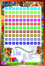 laminated NUMBERS 1-100 kids educational school type poster square math 15x23in