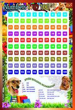 Laminado Números 1-100 Kids Educativo Escolar Tipo Poster Plaza matemáticas 15x23in