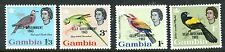 GAMBIA 1963 BIRDS SET OF 4 STAMPS MINT NEVER  HINGED COMPLETE!