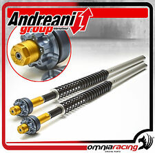 Kit Modifica Forcella Andreani Cartridge Ducati Monster 696 2011 11  Marzocchi
