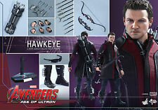 Hot Toys Avengers Age of Ultron Hawkeye 2.0 MMS289 MISB Great Packaging New