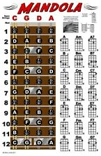 Mandola Chord Fretboard Instructional Wall Chart Poster Notes Chords