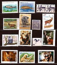 INDE  les animaux sauvage : éléphant,caracal,léopard,lions,divers  270T5