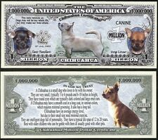 Chihuahua Dog Puppy & Adult Pics, Common Traits on Back - Lot of 10 Bills
