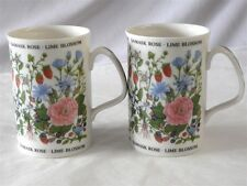 ROYAL DOULTON CHINA EXPRESSIONS HERBAL TEAS PAIR OF MUGS BY ERIKA PARRY 4""