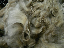 3 lbs RAW WOOL stuffing felting craft fiber fleece NAVAJO-CHURRO roving carpet